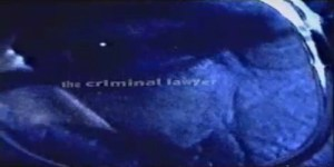 1998-the-criminal-lawyer-legal-sunscreen
