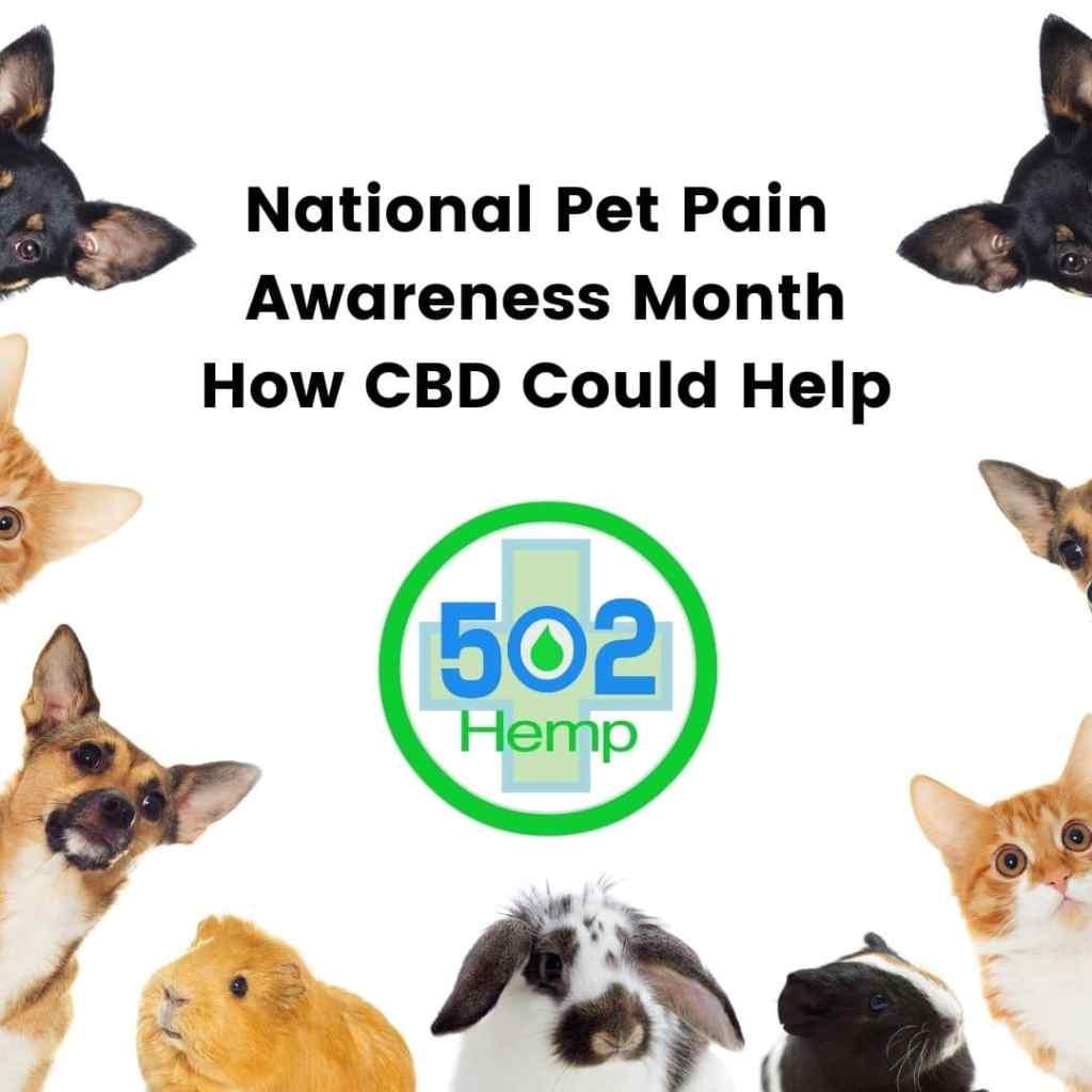 National pet pain awareness