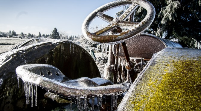 Pic of the Day – Frozen