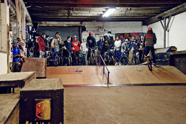 animal_5050_BMX_Group2-cm