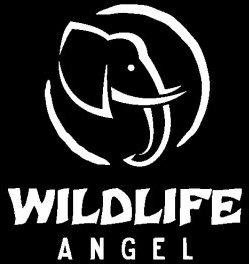 WILDLIFE ANGEL
