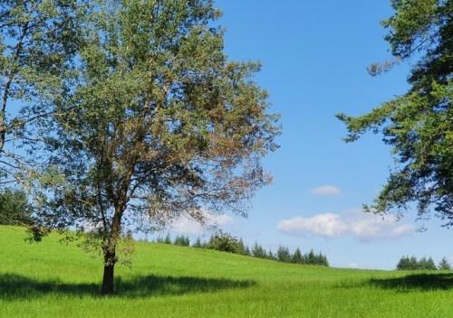un ciel du Cantal lundi soleil 2021