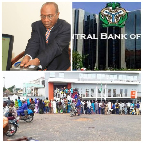 Self-Certification Bank Verification : Nigerians Blast Government, Rejects New Policy self-certification Self-Certification: Nigerians Blast Government, Rejects New Policy 1600385773326