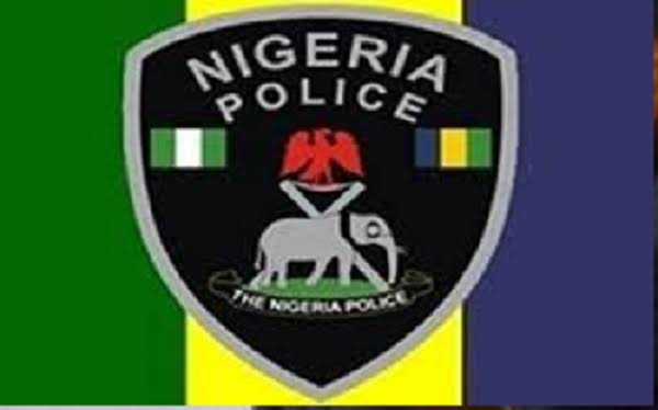 Nigerian Police swat: 9 facts you need to know about the newly established unit SWAT: 9 Facts you need to know About the newly established Unit images 2020 10 15T044944