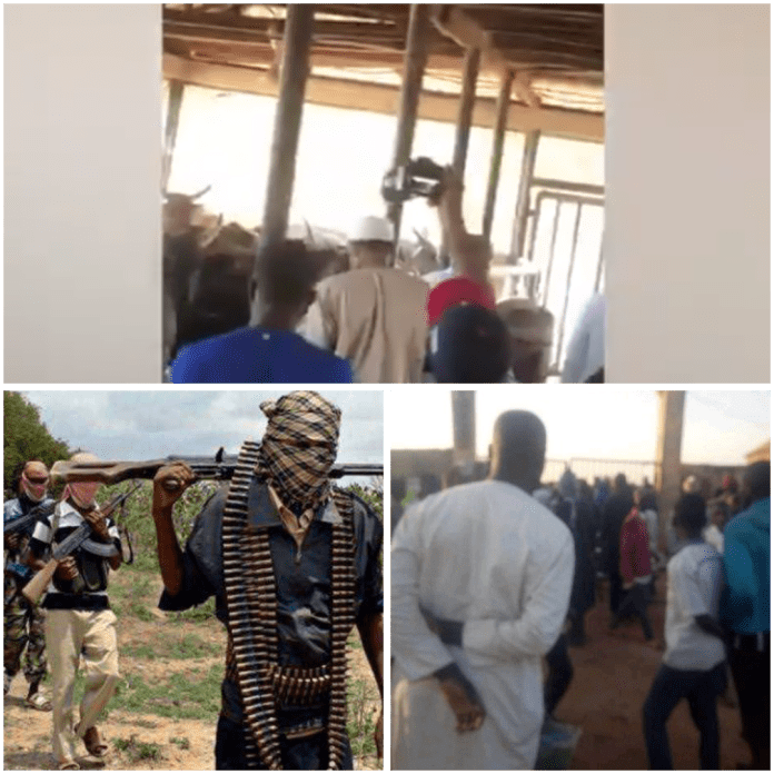 Outage as Buhari Visits His Cows, Shuns Families of Kidnapped School Students (Video) outage as buhari visits his cows, shuns families of kidnapped school students (video) - 1607958599457 - Outage as Buhari Visits His Cows, Shuns Families of Kidnapped School Students (Video)