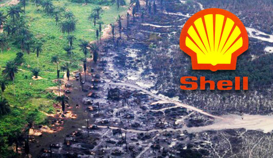 Dutch court orders Shell to pay Compensation to Niger delta communities over oil spill niger delta - shell petition - Just In: Dutch court orders Shell to pay Compensation to Niger delta communities over oil spill