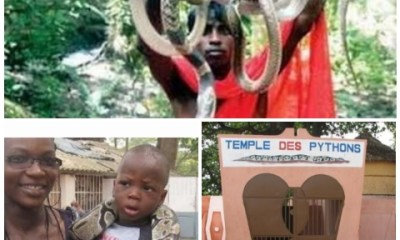 this is unbelievable! see 5 states in nigeria where snake is worshiped like god - Image 2021227211242709 - This Is Unbelievable! See 5 States In Nigeria Where Snake Is Worshiped Like God