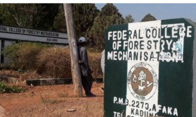 - Screenshot 20210409 082157 1 - Five More Kaduna Students Who Had Been Kidnapped Have Been Released