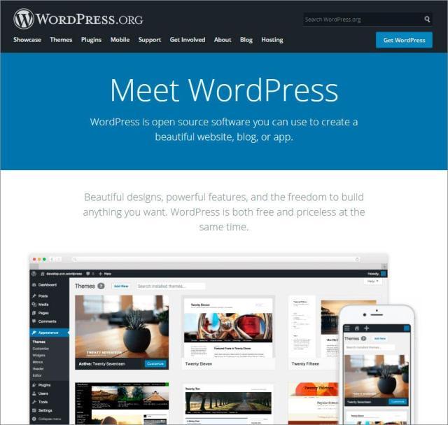 wordpress review