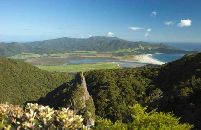 New Zealand hotspots Great Barrier Island