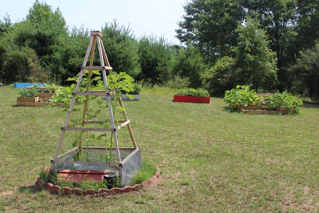 TOUR: Common Roots Garden [PHOTOS]