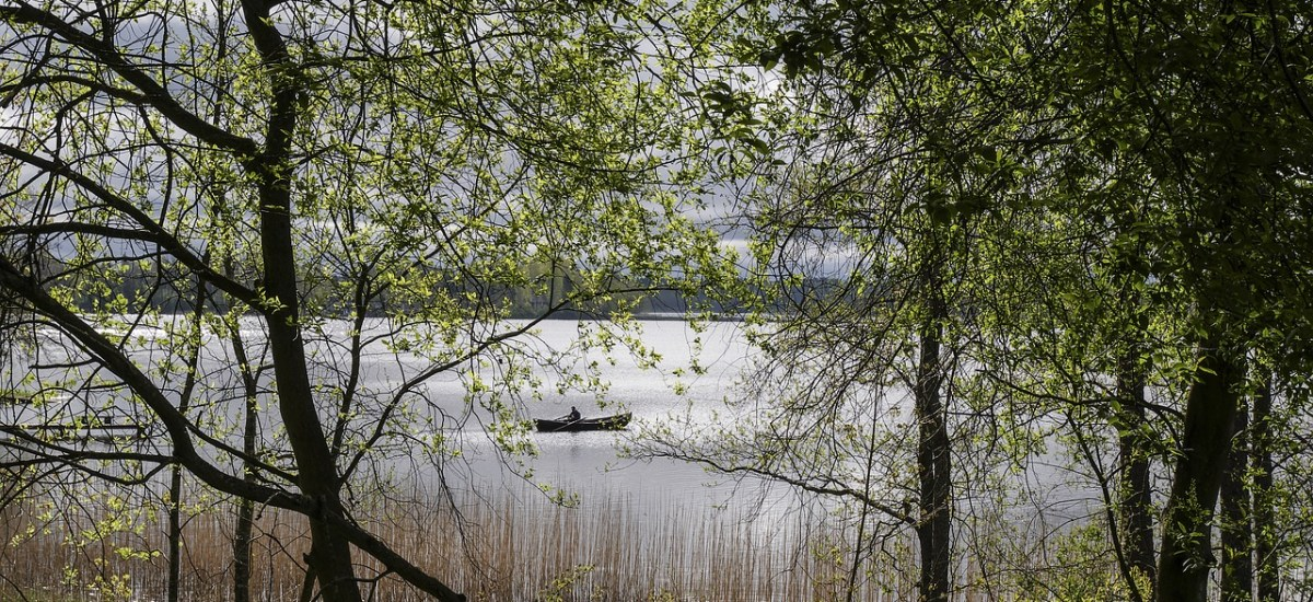 Lake Local Closed for the Season