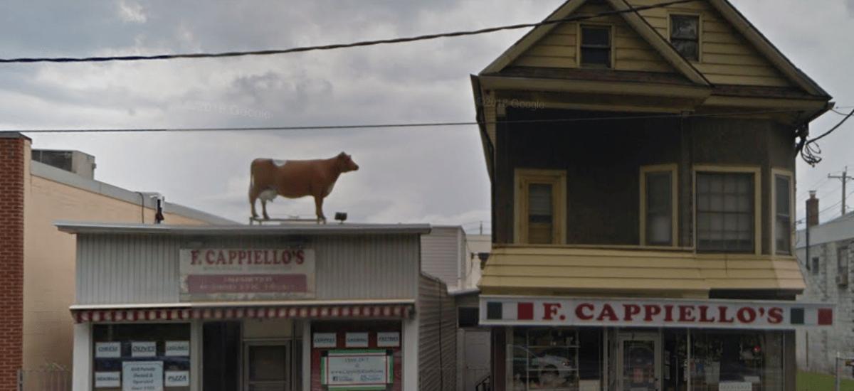 Legendary Cappiello Foods Closed, Schenectady