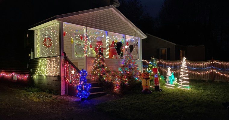Fulton County's Pandemic Christmas Show