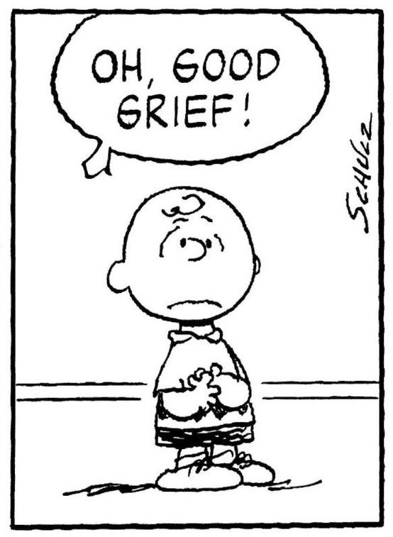 "Charlie Brown says ""Oh Good Grief,"" where is my happiness."