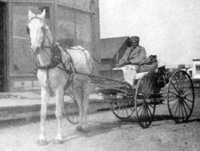 Stagecoach Mary in her buckboard with a white horse