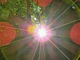 Irgendwann bilden alle Sonnen einen Kreis. Man sagt sich: rückwärts.