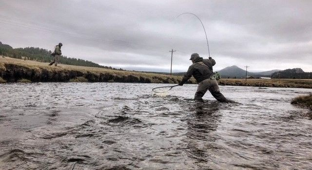 Colorado Fly Fishing Guides | Guided Trips by 5280 Angler