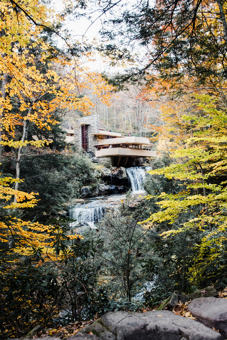 Frank Lloyd Wright Fallingwater house through the trees