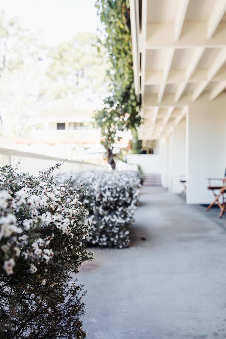 Hotel Carmel walkway