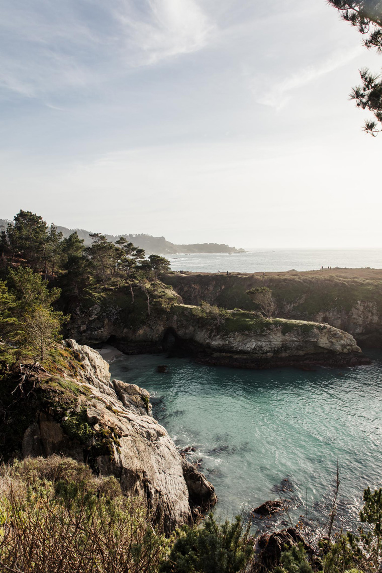 Point Lobos ocean landscape