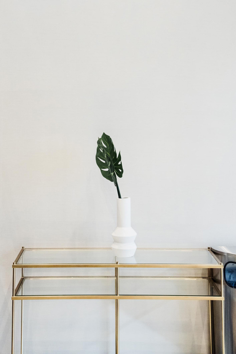 Glass table with plant in vase