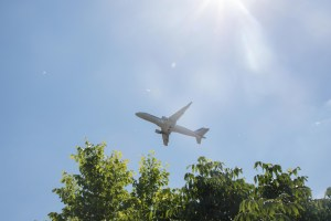 Plane flying by tree