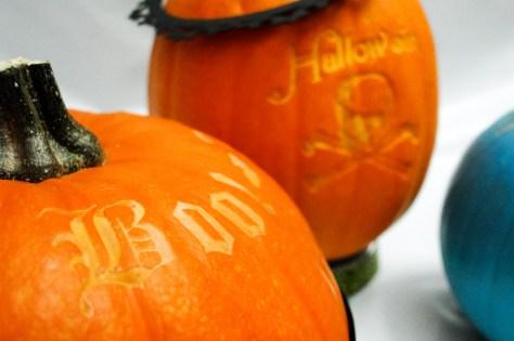Pumpkins (13 of 21)