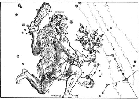 globe at night constellation