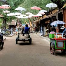 Gili Roads - horse and carriage