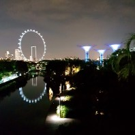 The Singapore flyer and garden by the bay at night