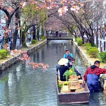 The cherry trees along the canals was about to burst out in bloom when I was there