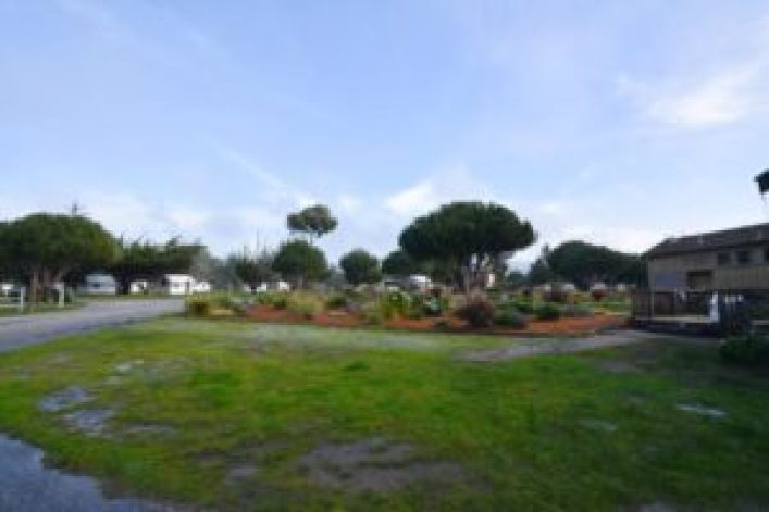 Campground for glamping at Costanoa