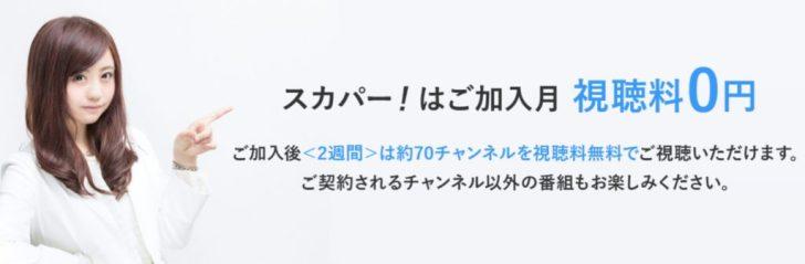 スカパー!の価格・デメリット・メリット