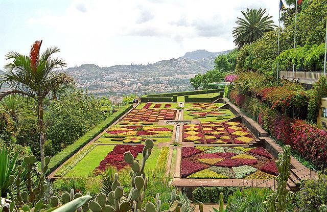 Funchal Botanic Garden Madeira Portugal Josh Jacobs