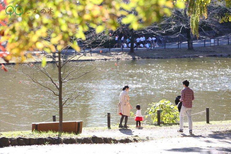 こむの木大宮公園