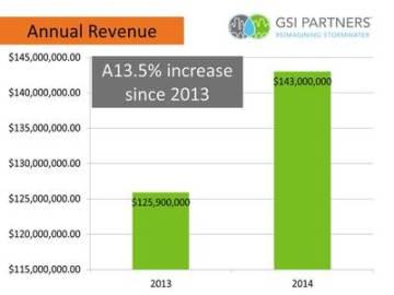 GSI Partners revenue growth 2