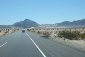 58GradNord - USA Roadtrip Kalifornien Giant Trees