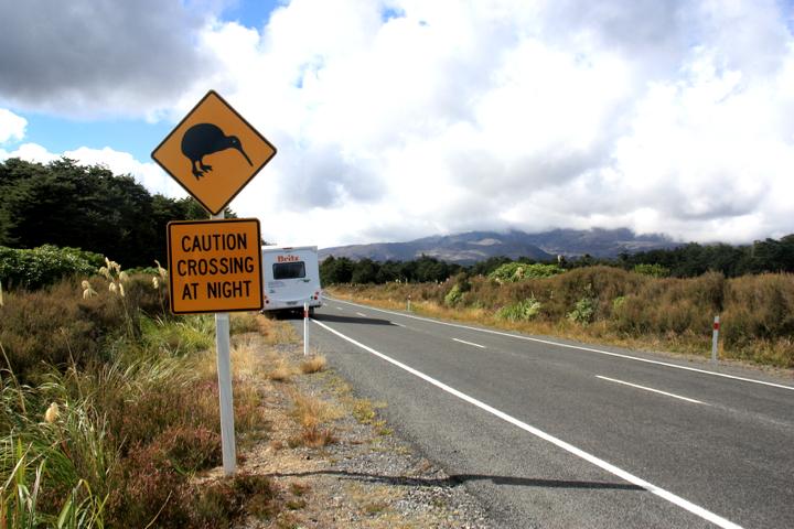 58GradNord - Elternzeit in Neuseeland - Kiwi Crossing