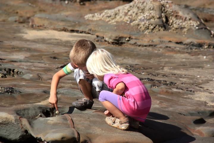 58GradNord - Elternzeit in Neuseeland - Kinder beim Muschelsuchen
