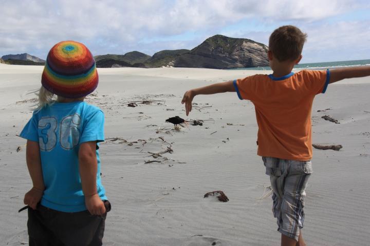 58GradNord - Elternzeit in Neuseeland - Wharariki Beach