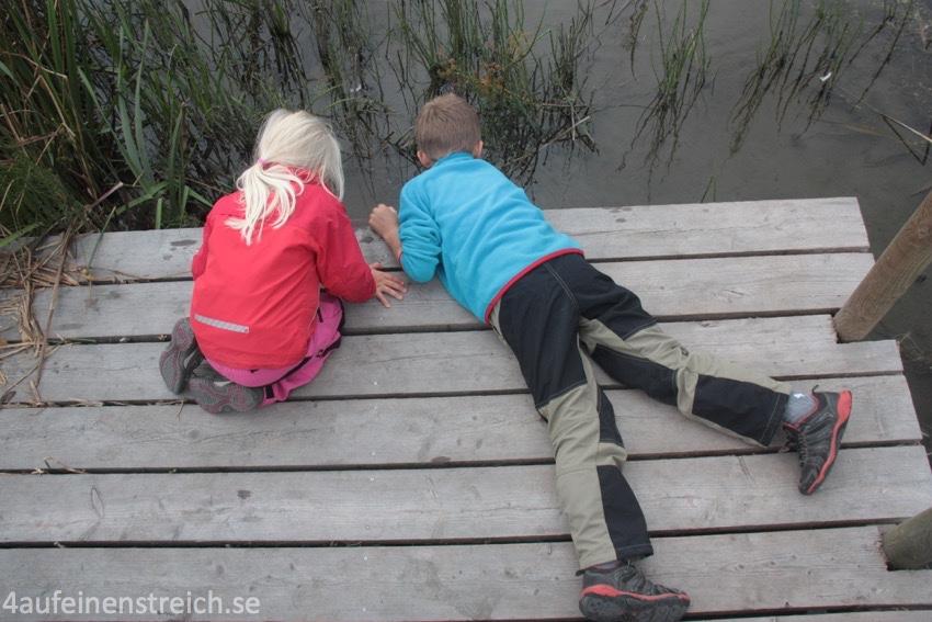 Bei einem früheren Besuch im Herbst 2012 gingen wir auf Erkundungstour im Seeschlamm...
