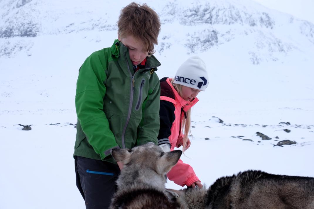 58 Grad Nord - Kungsleden im Winter - Huskies und Kinder