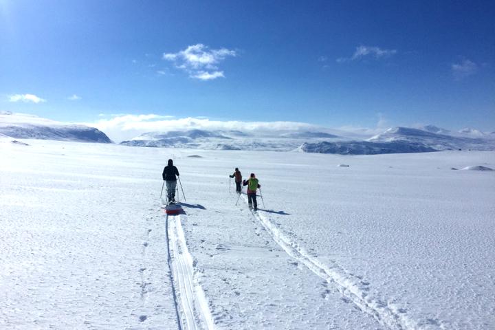 58 Grad Nord - Fotoparade Halbjahr in Bildern - Schönstes Bild - Schwedisch Lappland im Winter