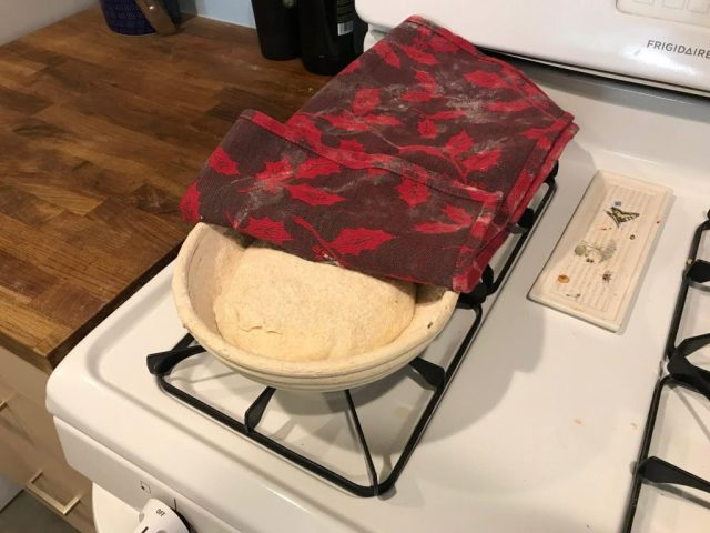 Artisan Bread proofing