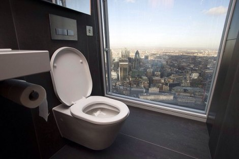 Toilet with a view