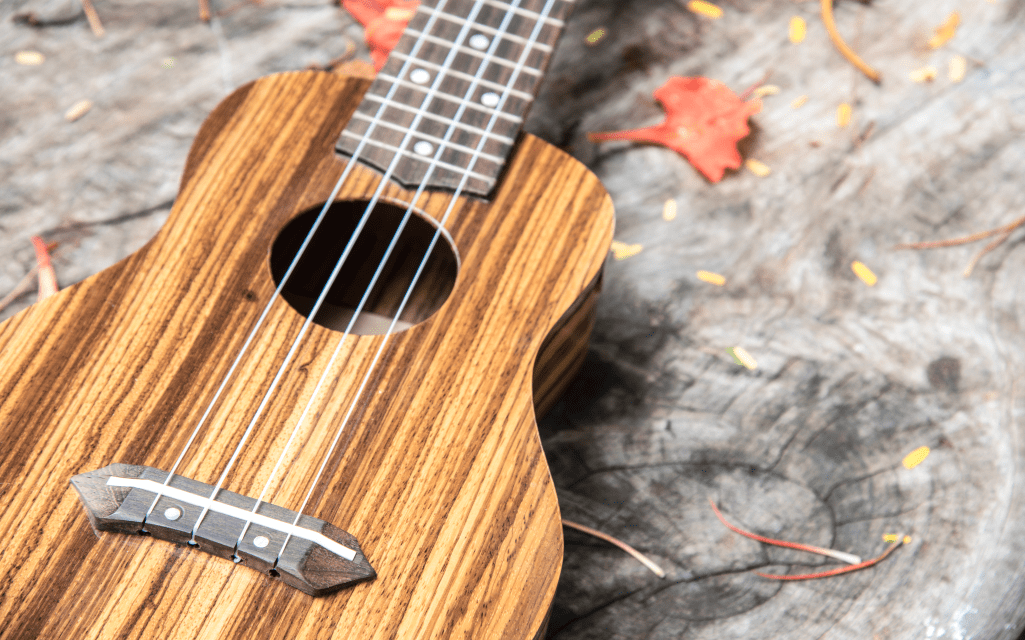 5 Things To Consider When Buying A Ukulele 5BestThings