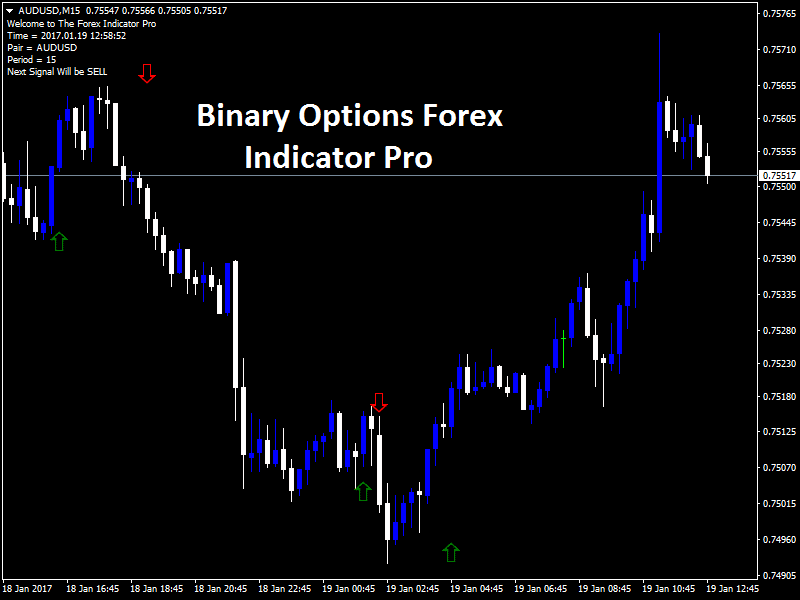 Binary options trading software 1 minute strategy
