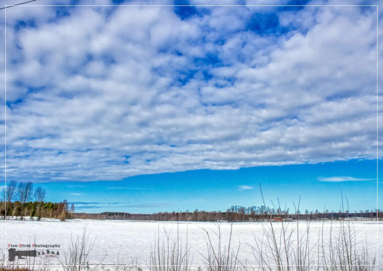 Winter landscape in the Eurajoki region near the Finnish nuclear power plants Olkiluoto 1 - 3