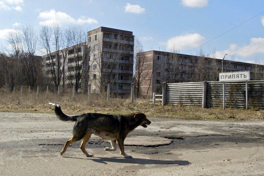 Какво скри властта в България след аварията в Чернобил през 1986 г.?